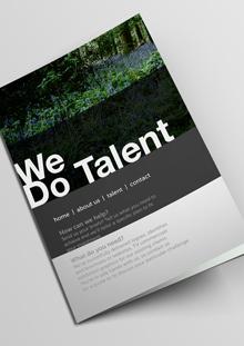 WDT Website